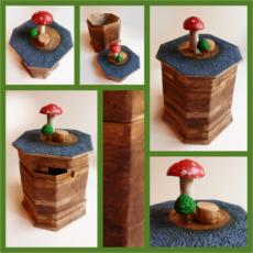 Kis magyar botanika doboz
