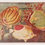 tengeri halak eredeti nyomat