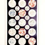 baktériumok eredeti régi nyomat