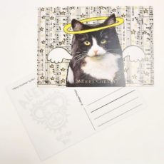 Boldog karácsonyt macska macska designer kollázs képeslap